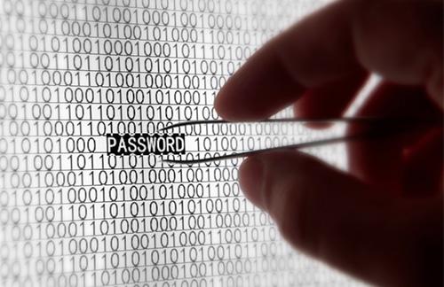 Vulnerability Assessment Service